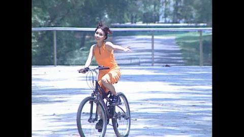 DVD Vol 2 Phố Hoa - Cơn Mơ Hoang Đường 2001